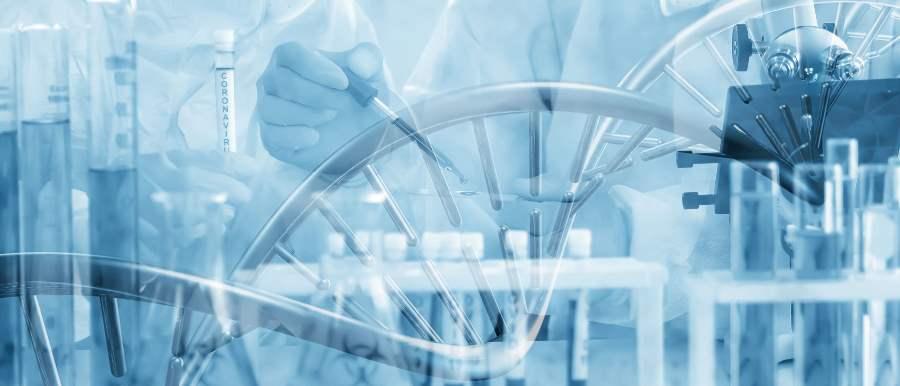 PCR検査・抗体検査・抗原検査の違い